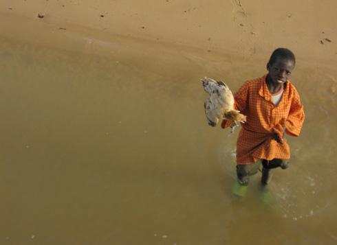 Jeune vendeur de poulets (Niger) © Guillaume Thibault
