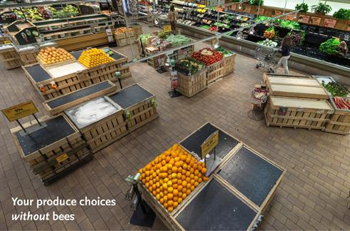 Le même étal sans les fruits et légumes pollinnisés par les insectes. (PRNewsFoto/Whole Foods Market)